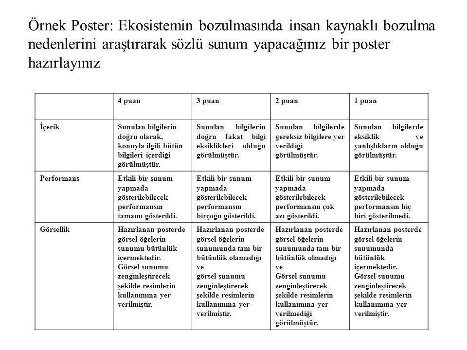 Örnek Poster: Ekosistemin bozulmasında insan kaynaklı bozulma nedenlerini araştırarak sözlü sunum yapacağınız bir poster hazırlayınız