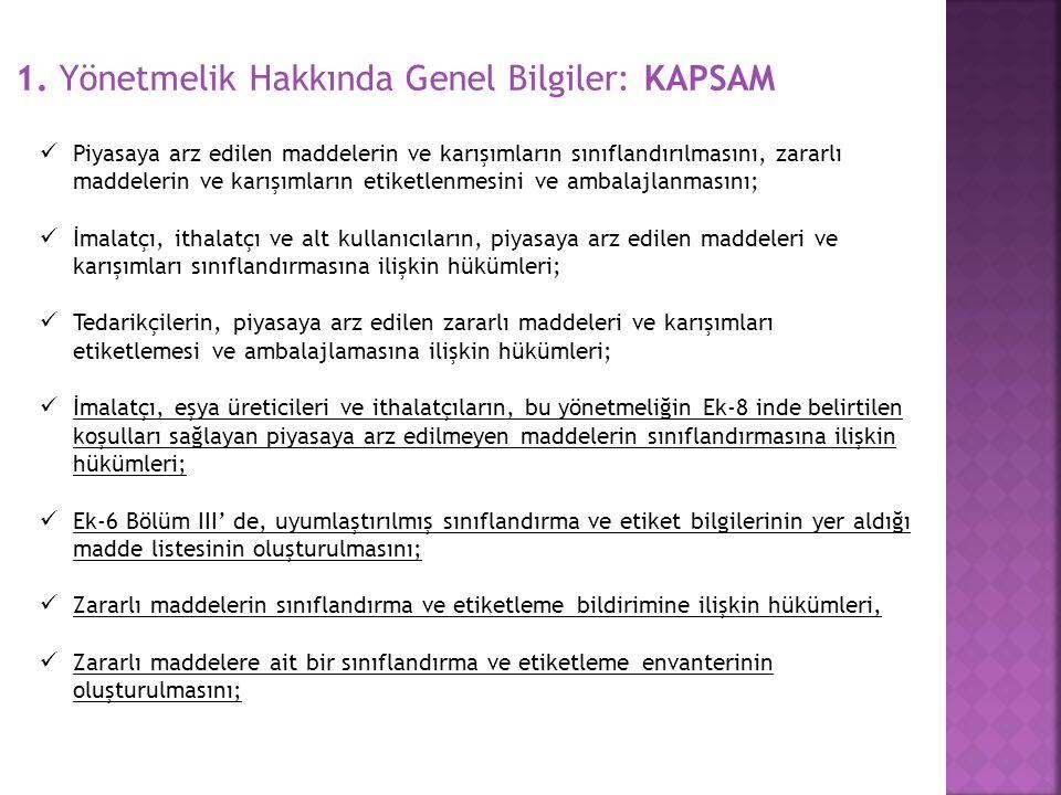 1. Yönetmelik Hakkında Genel Bilgiler: KAPSAM
