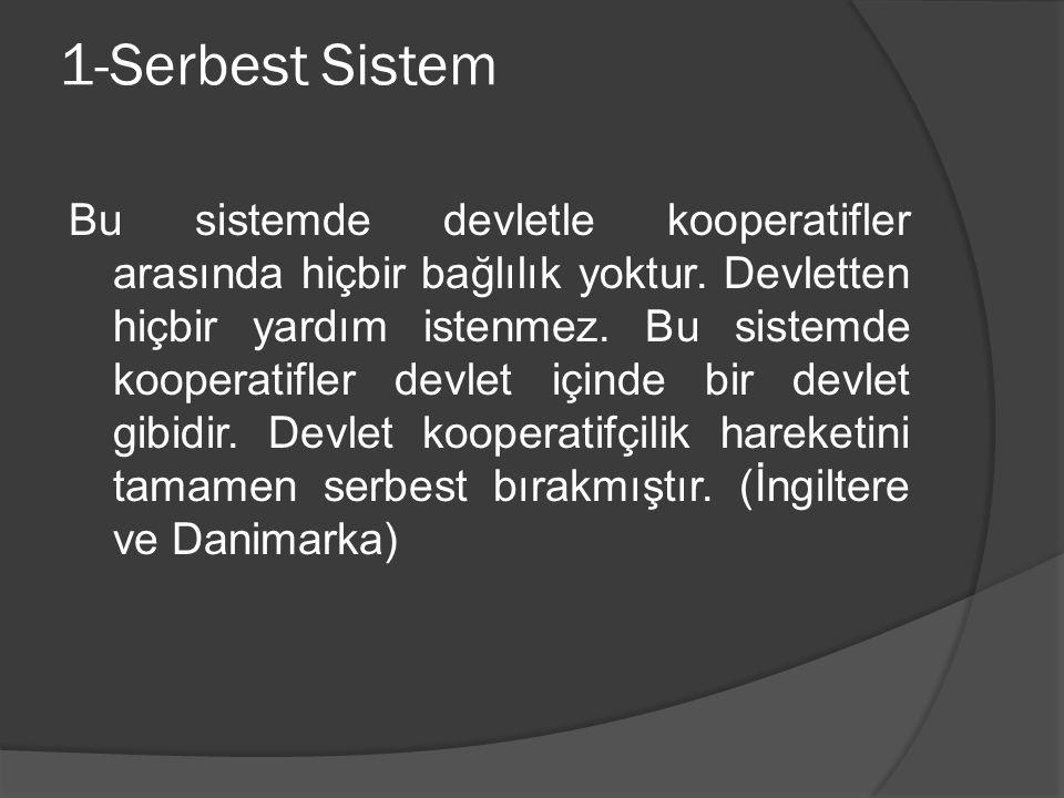 1-Serbest Sistem