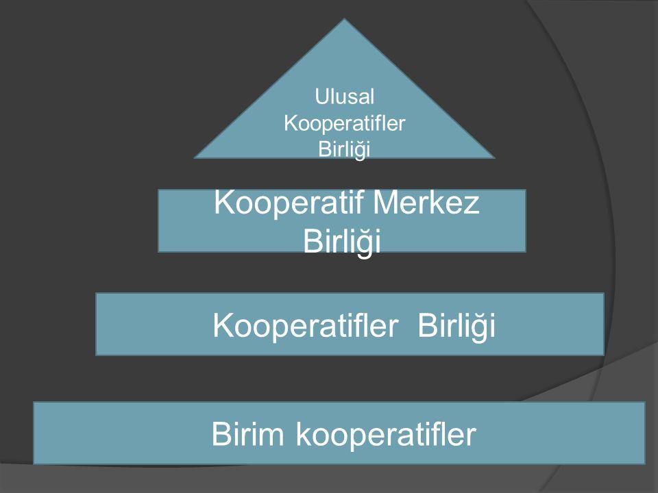 Kooperatif Merkez Birliği