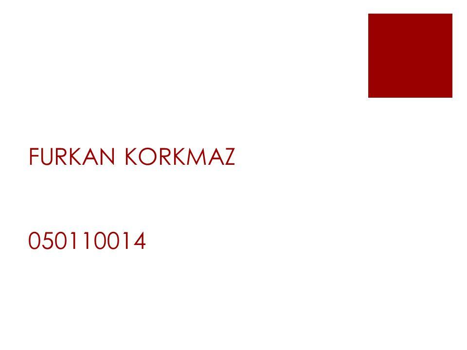 FURKAN KORKMAZ 050110014