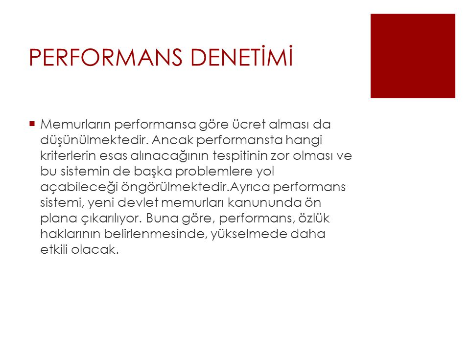PERFORMANS DENETİMİ