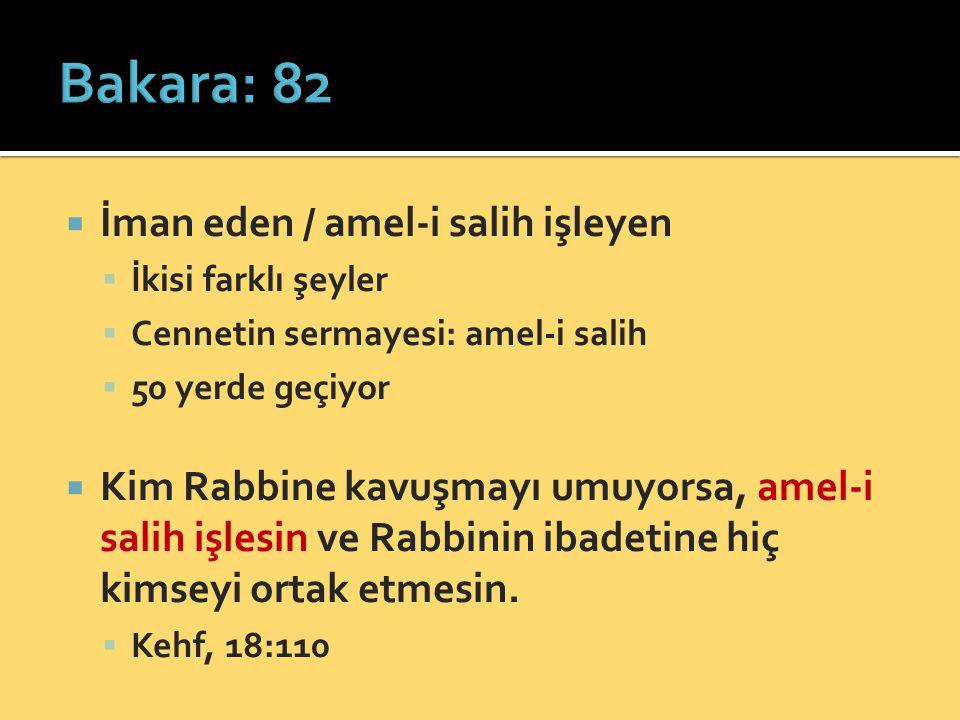 Bakara: 82 İman eden / amel-i salih işleyen
