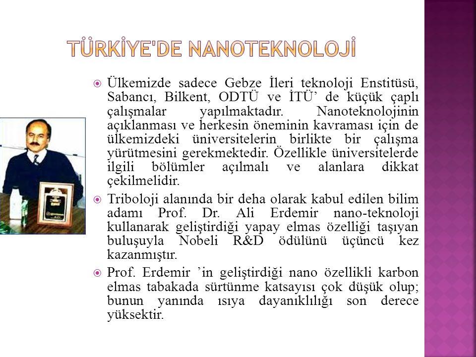 Türkİye de Nanoteknolojİ