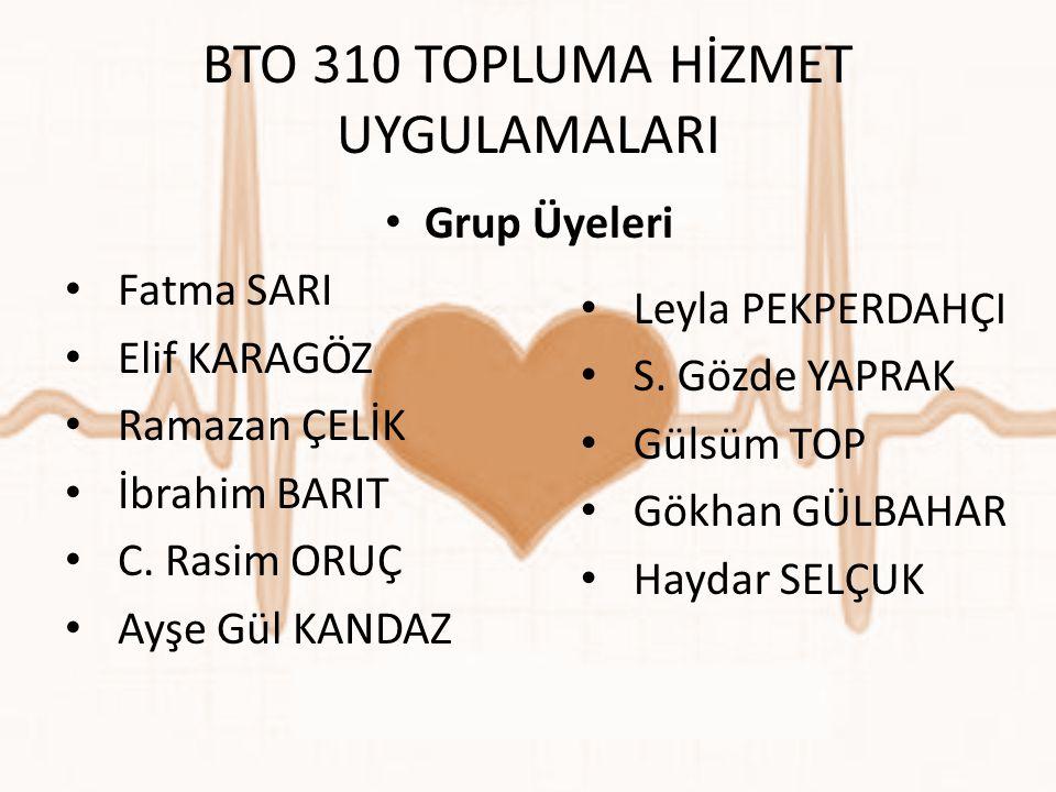 BTO 310 TOPLUMA HİZMET UYGULAMALARI