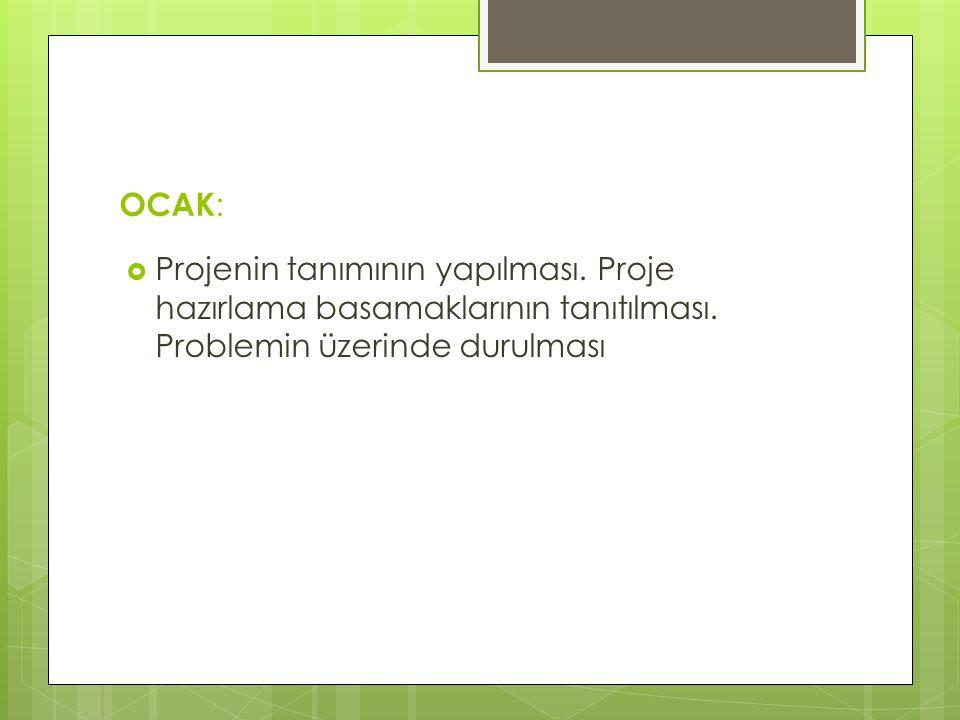 OCAK: Projenin tanımının yapılması. Proje hazırlama basamaklarının tanıtılması.