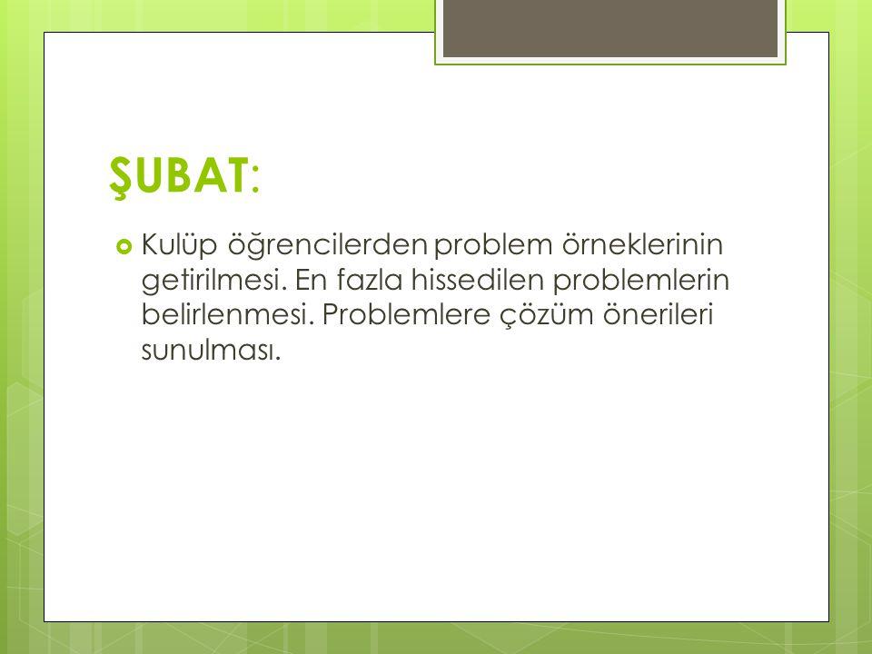 ŞUBAT: Kulüp öğrencilerden problem örneklerinin getirilmesi.