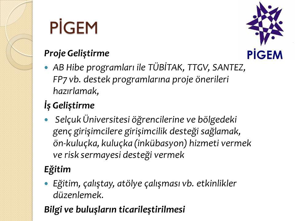 PİGEM Proje Geliştirme