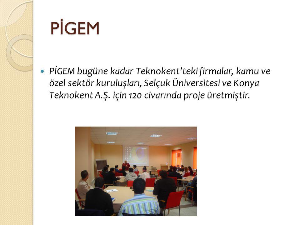 PİGEM