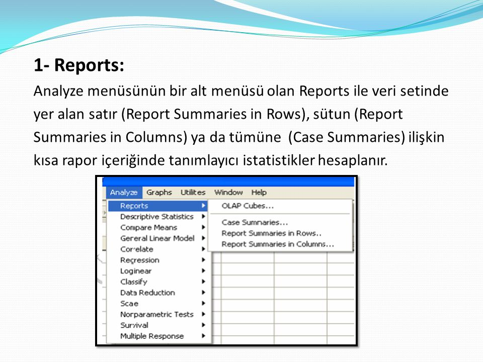 1- Reports: Analyze menüsünün bir alt menüsü olan Reports ile veri setinde. yer alan satır (Report Summaries in Rows), sütun (Report.