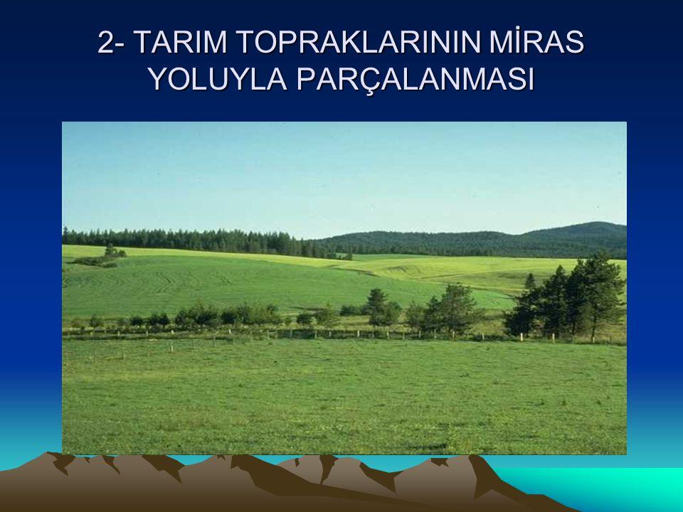 2- TARIM TOPRAKLARININ MİRAS YOLUYLA PARÇALANMASI