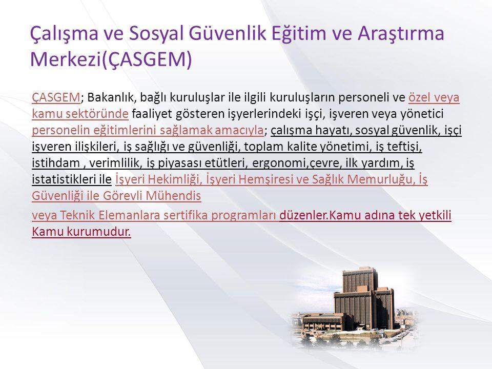 Çalışma ve Sosyal Güvenlik Eğitim ve Araştırma Merkezi(ÇASGEM)