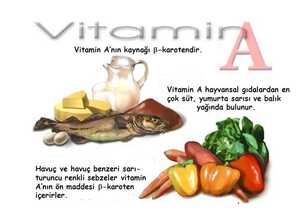 Vitamin A'nın kaynağı b-karotendir.