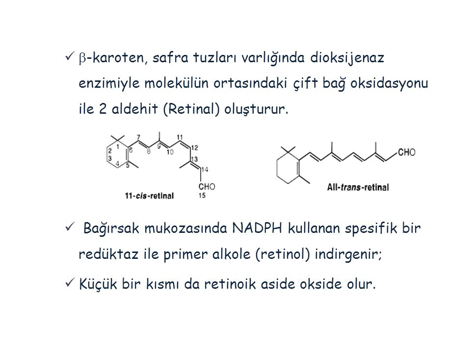 -karoten, safra tuzları varlığında dioksijenaz enzimiyle molekülün ortasındaki çift bağ oksidasyonu ile 2 aldehit (Retinal) oluşturur.