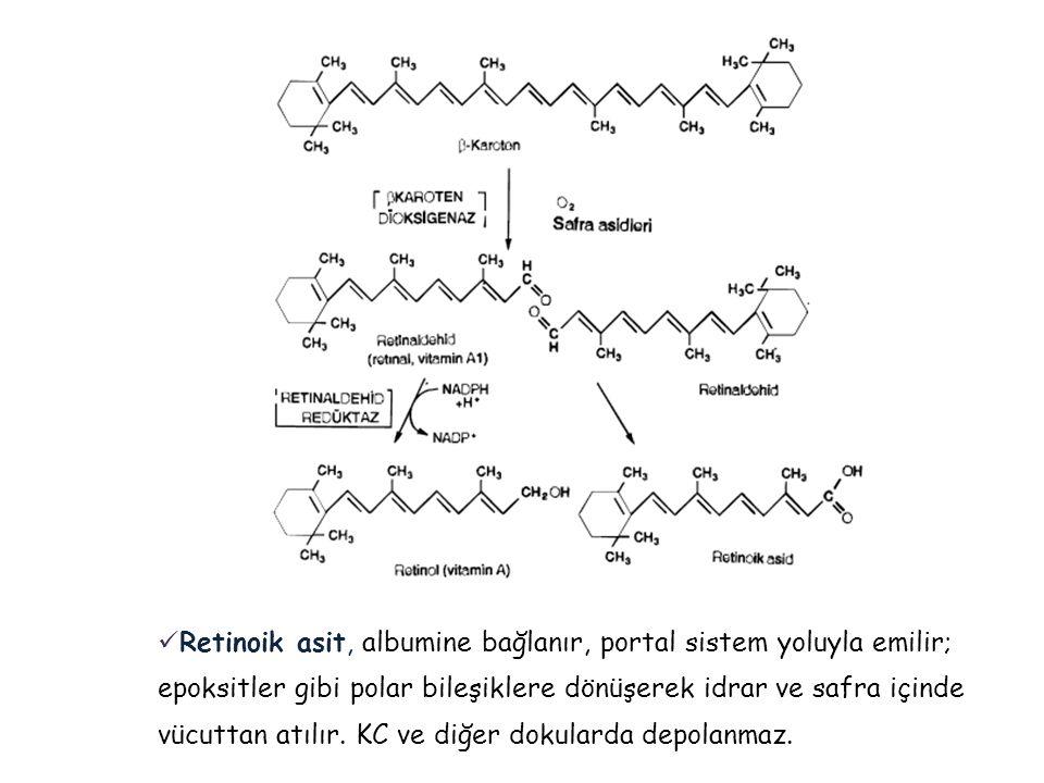 Retinoik asit, albumine bağlanır, portal sistem yoluyla emilir; epoksitler gibi polar bileşiklere dönüşerek idrar ve safra içinde vücuttan atılır.