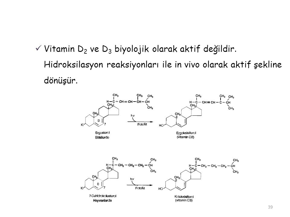 Vitamin D2 ve D3 biyolojik olarak aktif değildir