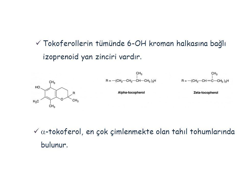 Tokoferollerin tümünde 6-OH kroman halkasına bağlı izoprenoid yan zinciri vardır.