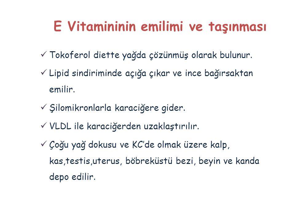 E Vitamininin emilimi ve taşınması