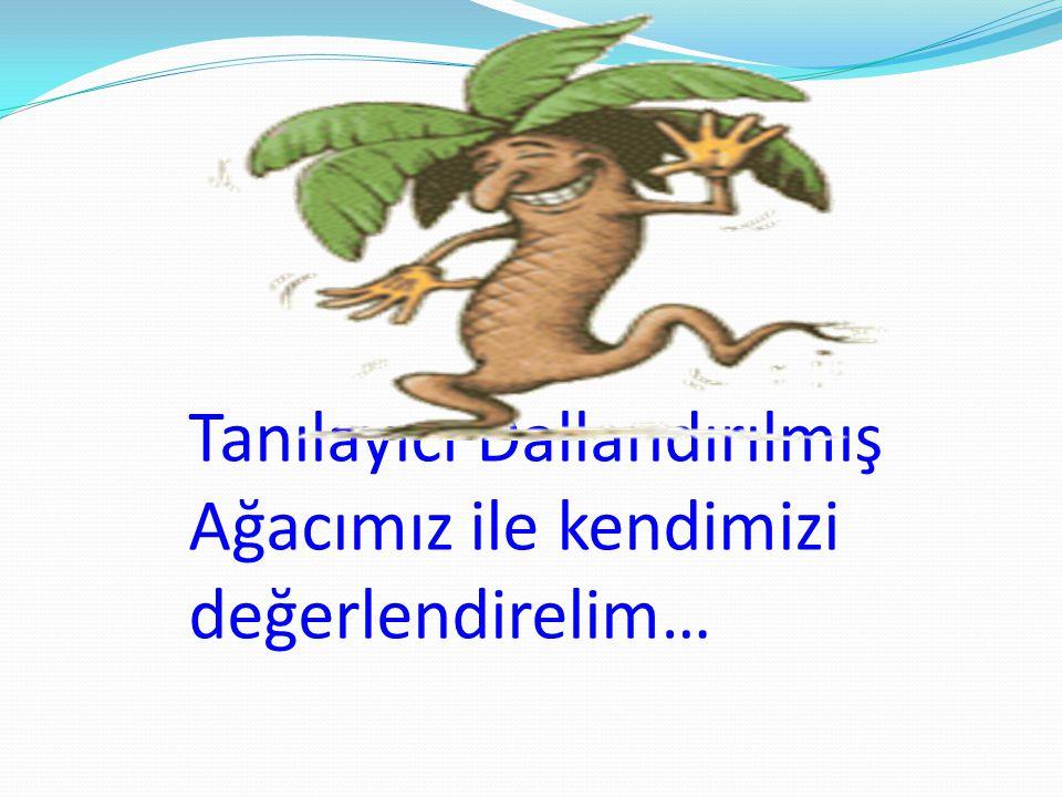 Tanılayıcı Dallandırılmış Ağacımız ile kendimizi değerlendirelim…
