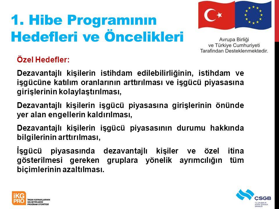 1. Hibe Programının Hedefleri ve Öncelikleri