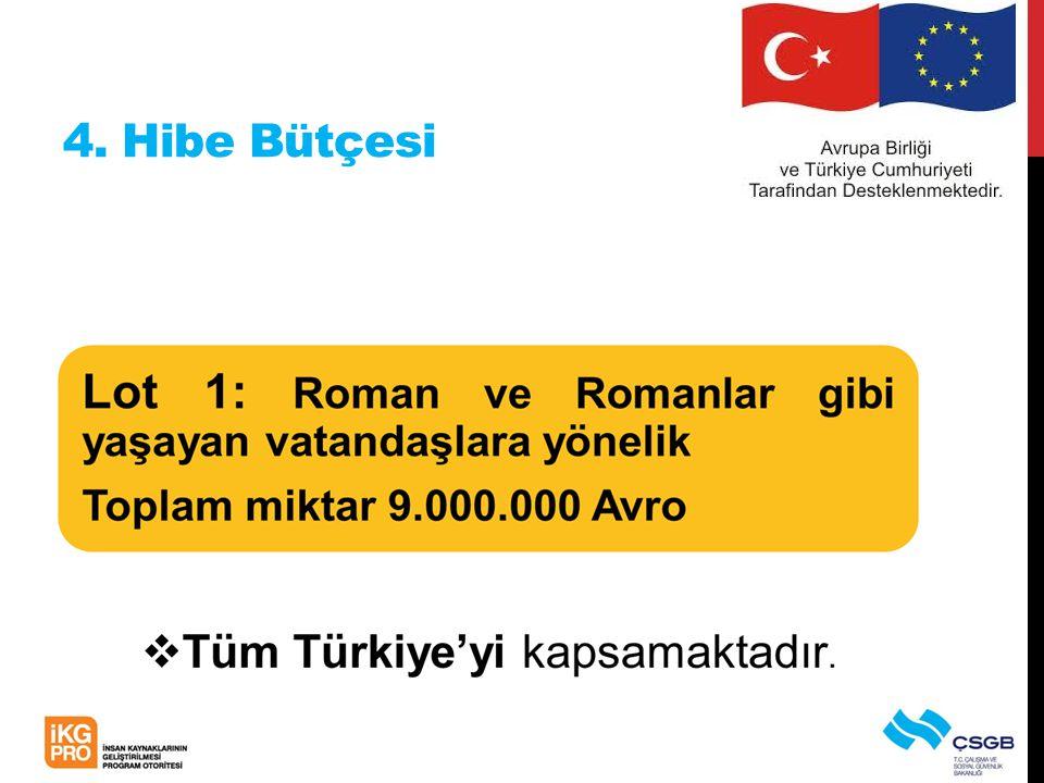 4. Hibe Bütçesi