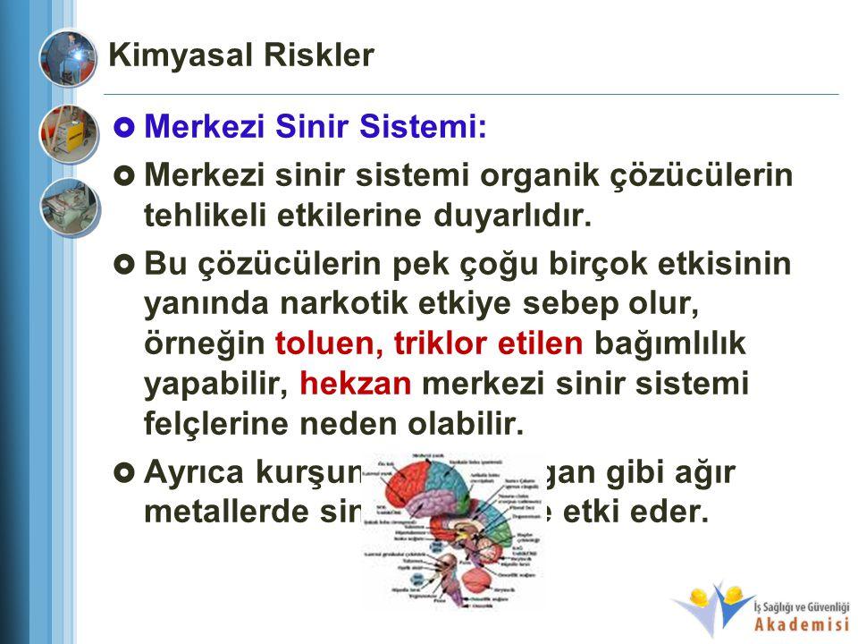 Kimyasal Riskler Merkezi Sinir Sistemi: Merkezi sinir sistemi organik çözücülerin tehlikeli etkilerine duyarlıdır.