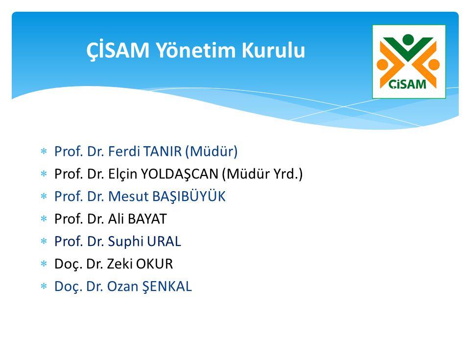 ÇİSAM Yönetim Kurulu Prof. Dr. Ferdi TANIR (Müdür)