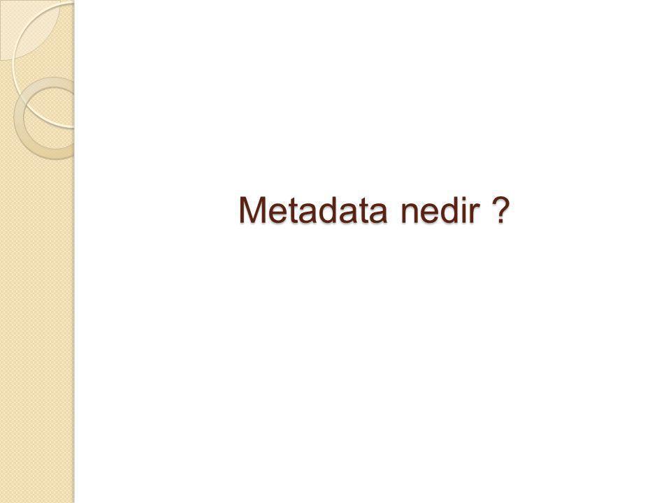 Metadata nedir