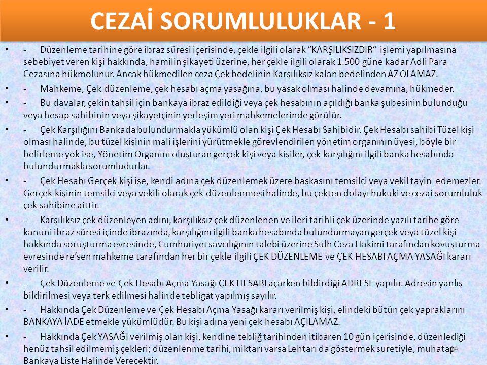 CEZAİ SORUMLULUKLAR - 1