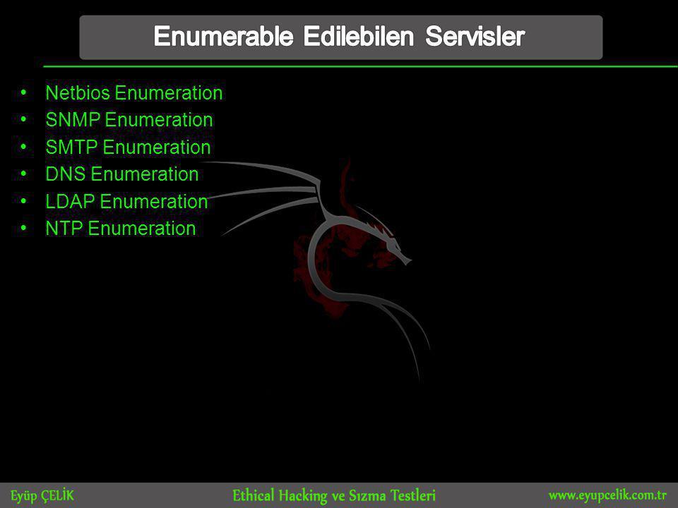 Enumerable Edilebilen Servisler