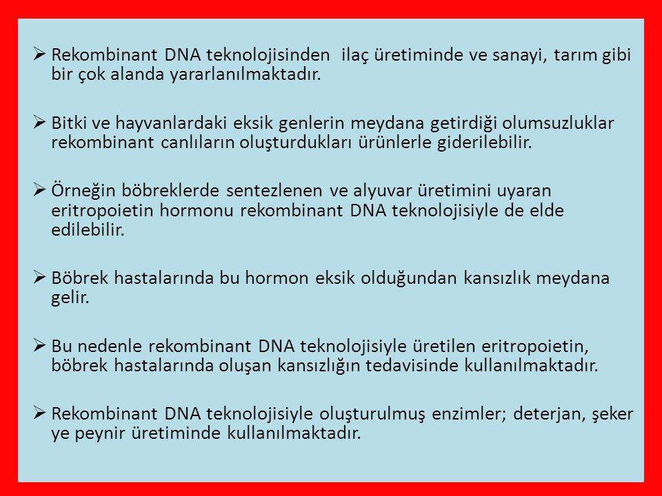 Rekombinant DNA teknolojisinden ilaç üretiminde ve sanayi, tarım gibi bir çok alanda yararlanılmaktadır.