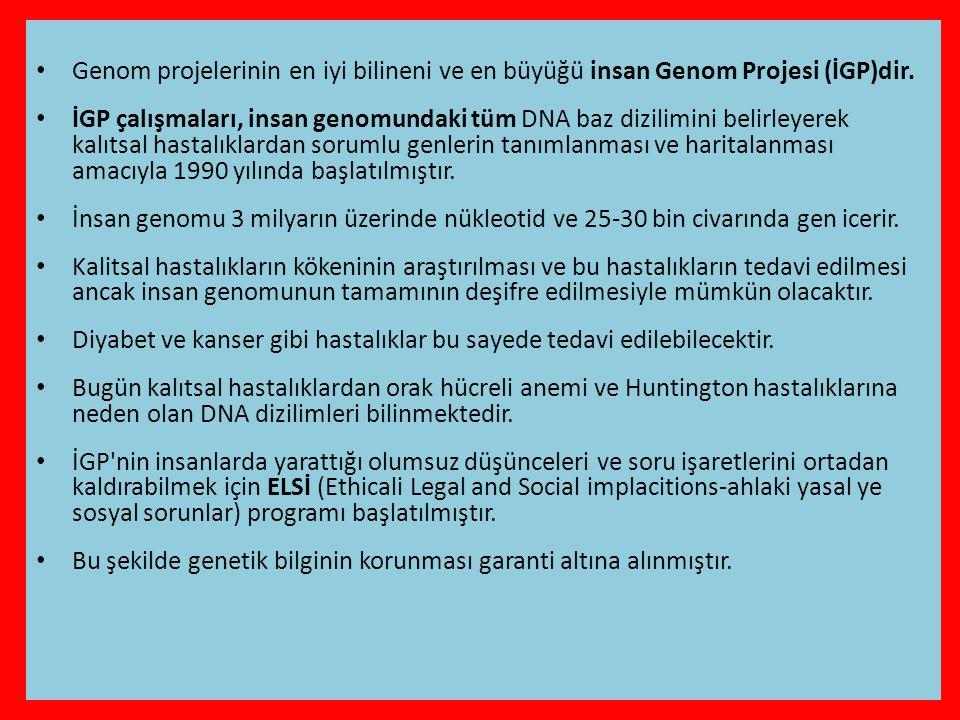 Genom projelerinin en iyi bilineni ve en büyüğü insan Genom Projesi (İGP)dir.