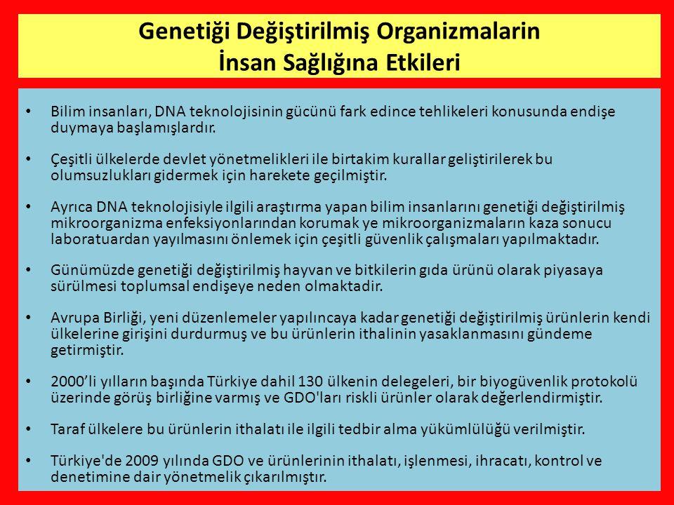 Genetiği Değiştirilmiş Organizmalarin İnsan Sağlığına Etkileri