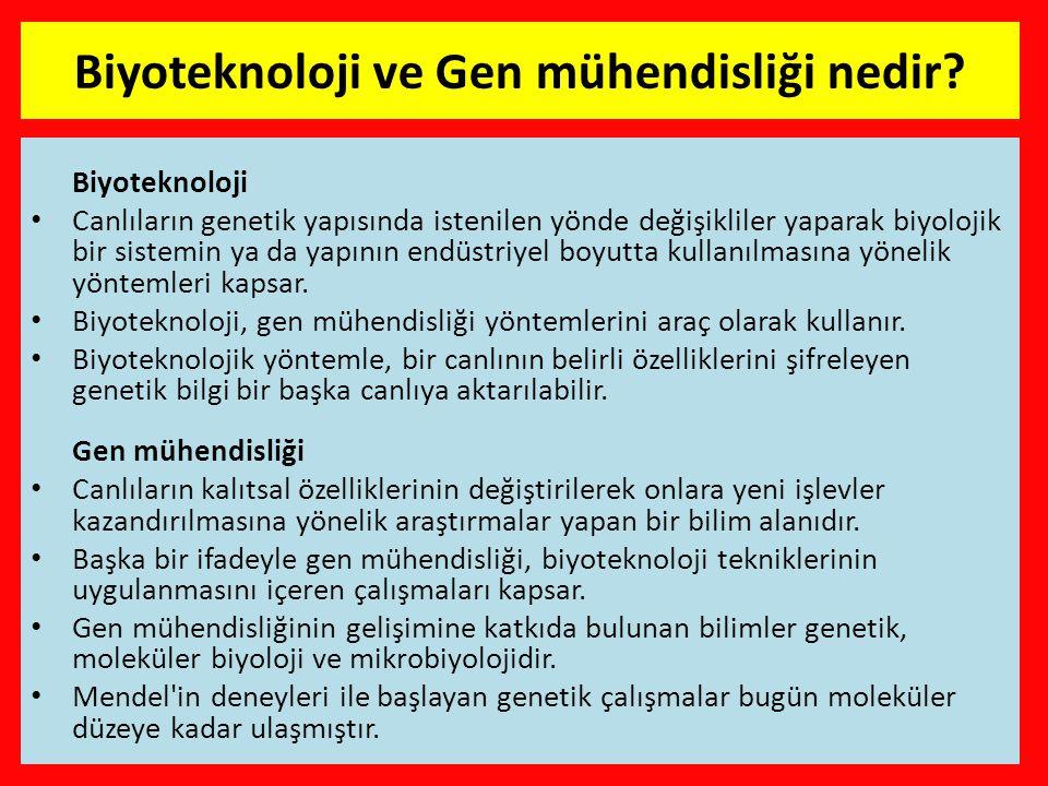 Biyoteknoloji ve Gen mühendisliği nedir