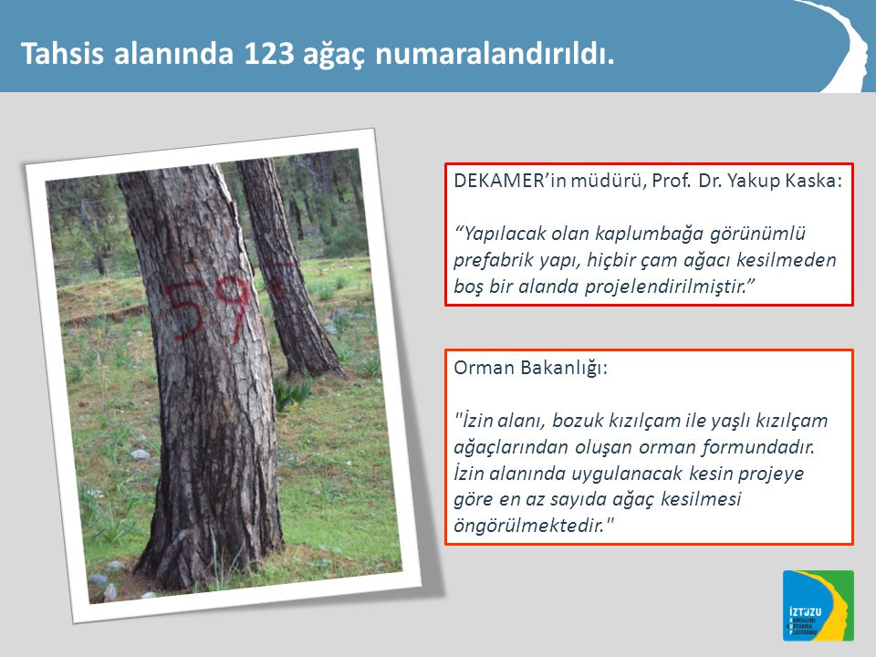 Tahsis alanında 123 ağaç numaralandırıldı.