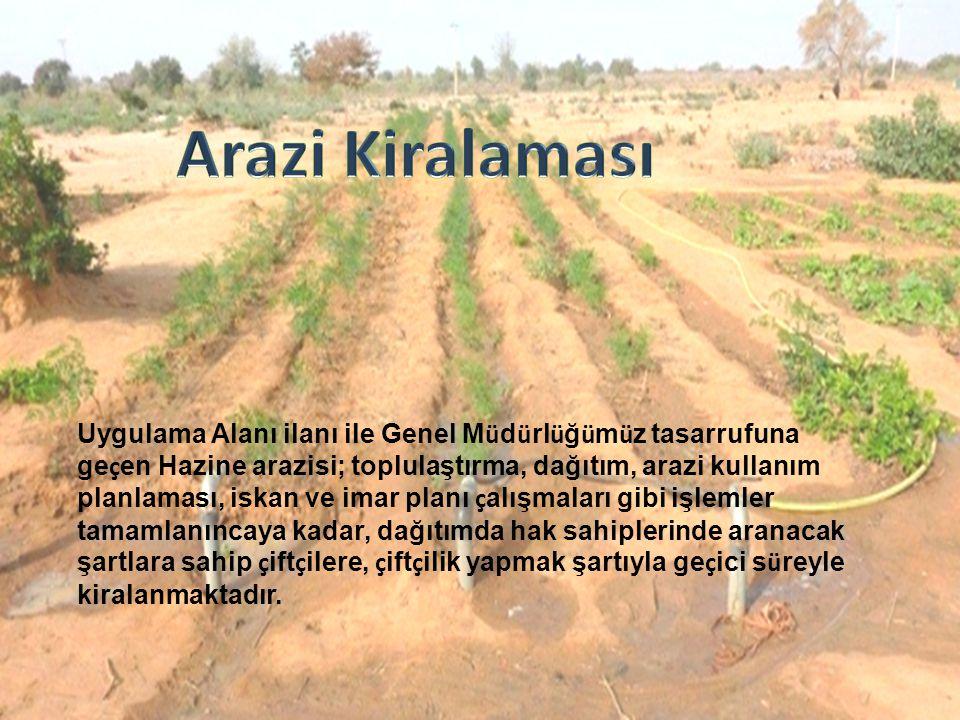 Arazi Kiralaması
