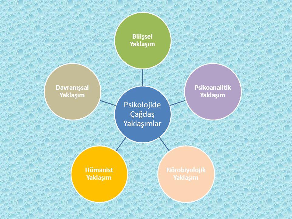 Psikoanalitik Yaklaşım Nörobiyolojik Yaklaşım