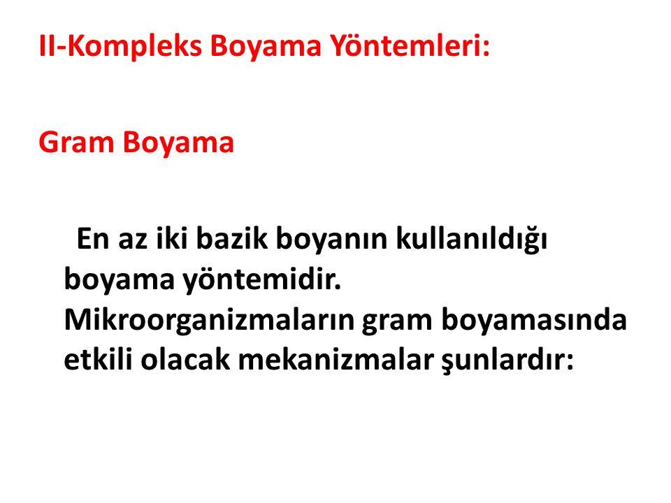 II-Kompleks Boyama Yöntemleri: