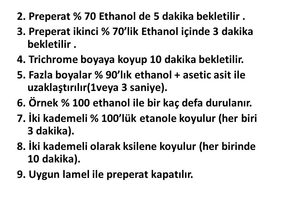 2. Preperat % 70 Ethanol de 5 dakika bekletilir. 3