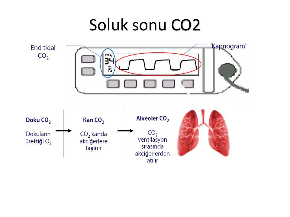 Soluk sonu CO2