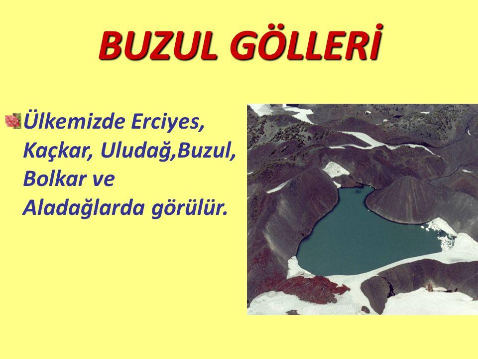 BUZUL GÖLLERİ Ülkemizde Erciyes, Kaçkar, Uludağ,Buzul, Bolkar ve Aladağlarda görülür.