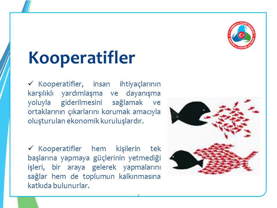 Kooperatifler