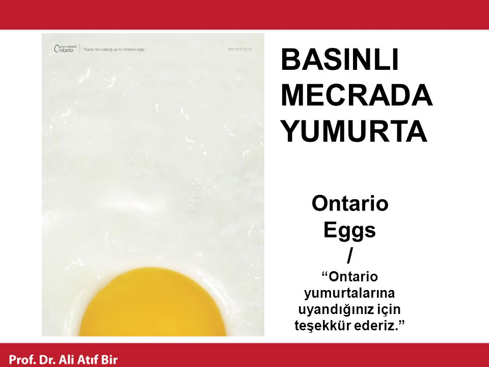 Ontario yumurtalarına uyandığınız için teşekkür ederiz.