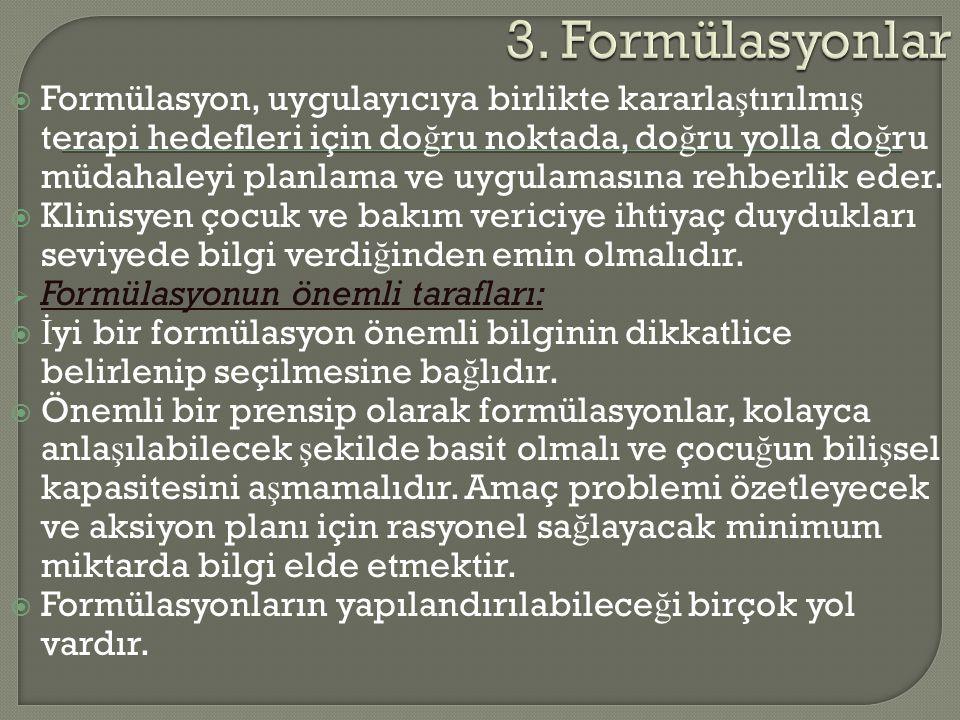 3. Formülasyonlar