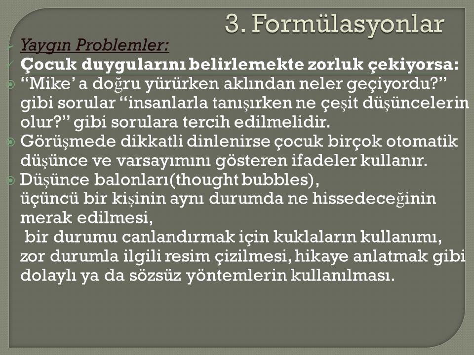 3. Formülasyonlar Yaygın Problemler: