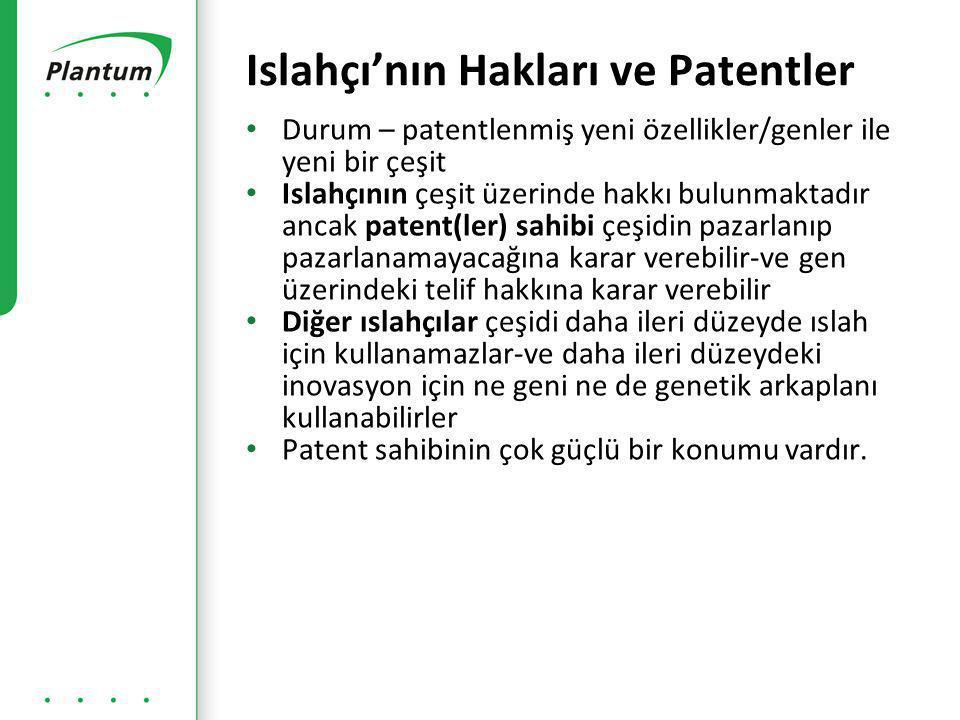 Islahçı'nın Hakları ve Patentler