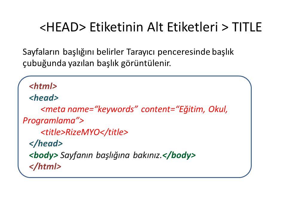<<HEAD> Etiketinin Alt Etiketleri > TITLE