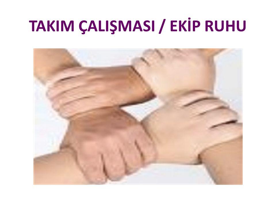 TAKIM ÇALIŞMASI / EKİP RUHU