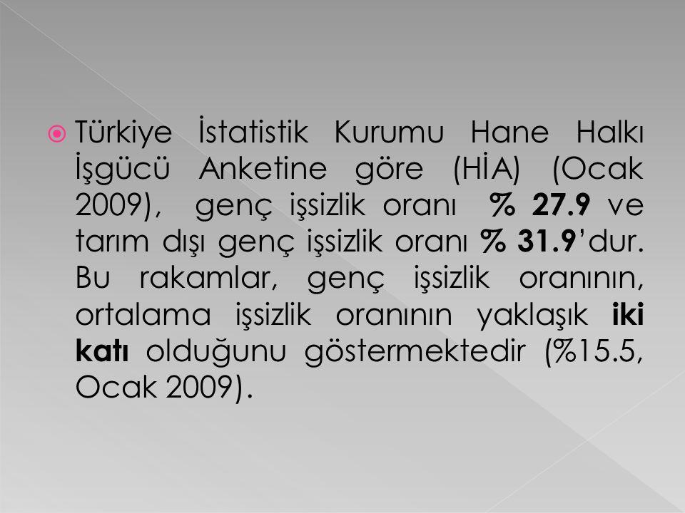 Türkiye İstatistik Kurumu Hane Halkı İşgücü Anketine göre (HİA) (Ocak 2009), genç işsizlik oranı % 27.9 ve tarım dışı genç işsizlik oranı % 31.9'dur.