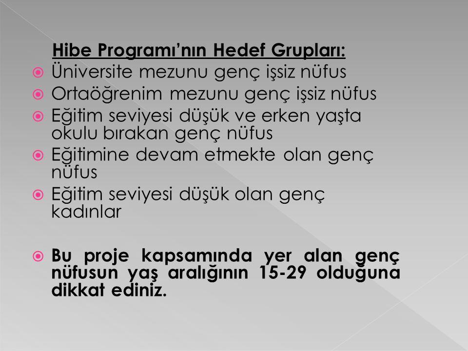 Hibe Programı'nın Hedef Grupları:
